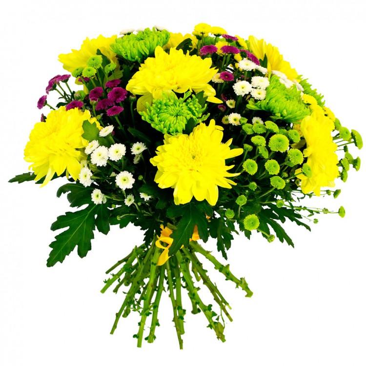 зависит возможностей, хризантема букет на праздники фото пожелания днём рождения